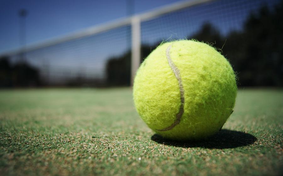 テニスボール 100均